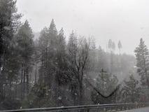 σκηνή χειμερινή στοκ εικόνα