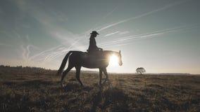 Σκιαγραφία του αλόγου οδήγησης γυναικών στον τομέα Όμορφο cowgirl στο καφετί άλογο απόθεμα βίντεο