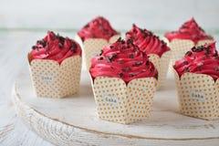 Σοκολάτα Cupcakes με τη ρόδινη τήξη στοκ εικόνα με δικαίωμα ελεύθερης χρήσης