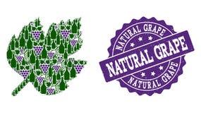 Σύνθεση φύλλων σταφυλιών των μπουκαλιών κρασιού και του σταφυλιού και του γραμματοσήμου Grunge διανυσματική απεικόνιση