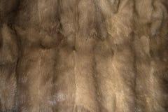 Σύσταση υποβάθρου γουνών βιζόν στοκ φωτογραφία με δικαίωμα ελεύθερης χρήσης
