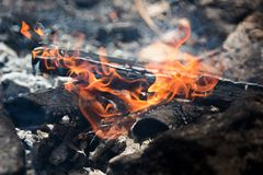 στενή πυρκαγιά επάνω καίγοντας δάσος στοκ εικόνες