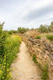 Στενό μονοπάτι κατά μήκος ενός φράκτη πετρών στον τρόπο του ST James, Camino de Σαντιάγο στη Ναβάρρα, Ισπανία, διαδρομή maneru-Ci στοκ εικόνες