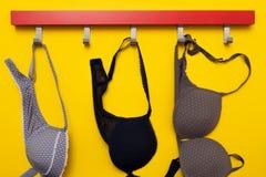Στηθόδεσμος στην κρεμάστρα στο μπλε υπόβαθρο Σεξουαλικά θηλυκά ενδύματα στοκ φωτογραφίες με δικαίωμα ελεύθερης χρήσης