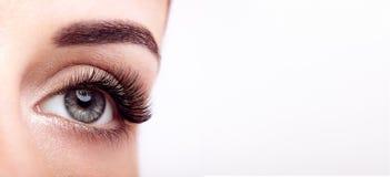ψεύτικο θηλυκό ματιών eyelashes μα στοκ εικόνες με δικαίωμα ελεύθερης χρήσης