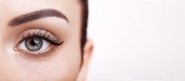 ψεύτικο θηλυκό ματιών eyelashes μα στοκ φωτογραφία με δικαίωμα ελεύθερης χρήσης