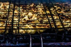 Ψημένο στη σχάρα κρέας στη σχάρα στοκ εικόνα με δικαίωμα ελεύθερης χρήσης