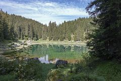 "ï"" ¿ ï"" ¿ Reflexionen auf See Carezza-karersee, Nova Levante, Süd-Tirol stockfoto"