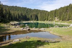 "ï"" ¿ ï"" ¿ Reflexionen auf See Carezza-karersee, Nova Levante, Süd-Tirol stockfotografie"