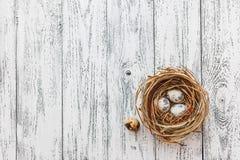 Τα αυγά Πάσχας βρίσκονται σε μια φωλιά στο υπόβαθρο ενός ελαφριού ξύλινου tabl στοκ φωτογραφία με δικαίωμα ελεύθερης χρήσης