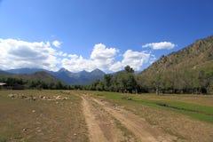 Τα βουνά των βουνών Barguzin, αυτή η κοιλάδα του ποταμού Barguzin στοκ εικόνα