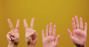 Τα χέρια ψάχνουν τη θέση τους σε ένα κίτρινο υπόβαθρο που απομονώνεται στο στούντιο Συνάθροιση, σημάδι ειρήνης, αστείος, comedic, φιλμ μικρού μήκους