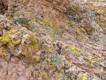 Τα χρώματα βράχου ερήμων, τοποθετούν την αγριότητα Nutt στοκ φωτογραφία με δικαίωμα ελεύθερης χρήσης
