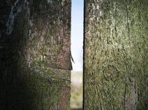 Τεμάχιο ενός παλαιού φράκτη στοκ εικόνες με δικαίωμα ελεύθερης χρήσης