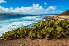 Τουρισμός και ταξίδι Κανάρια νησιά tenerife στοκ φωτογραφία με δικαίωμα ελεύθερης χρήσης