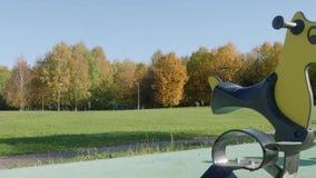 Τοπίο φθινοπώρου στο πάρκο της Μόσχας απόθεμα βίντεο