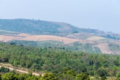 Τοπικό καλλιεργήσιμο έδαφος στο υψηλό βουνό στοκ φωτογραφίες