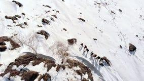 Το εναέριο quadrocopter αφαιρεί το βουνό, που καλύπτεται με το χιόνι, που πετά πέρα από το Πέρα από όποια είναι ομάδα τουριστών μ απόθεμα βίντεο