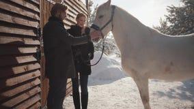 Το ευτυχές ζεύγος ξοδεύει το χρόνο υπαίθρια στο αγρόκτημα Ο τύπος και το κορίτσι επικοινωνούν να σταθούν δίπλα σε ένα όμορφο άσπρ απόθεμα βίντεο