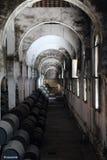 το κονιάκ κελαριών πλαισιώνει το δρύινο εκεί κρασί στοκ εικόνες με δικαίωμα ελεύθερης χρήσης