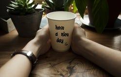 Το κορίτσι κρατά τον καυτό καφέ στα χέρια της στα πλαίσια μιας όμορφης ξύλινης στρωματοειδούς φλέβας παραθύρων Μια άνετη έννοια κ στοκ εικόνες με δικαίωμα ελεύθερης χρήσης