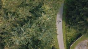 Το νέο ζεύγος περπατά μαζί στο πάρκο Θερινός καιρός Πυροβολισμός από τον αέρα Εναέριος πυροβολισμός απόθεμα βίντεο