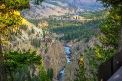 Το διάσημο μεγάλο φαράγγι του Yellowstone στο Ουαϊόμινγκ στοκ φωτογραφία με δικαίωμα ελεύθερης χρήσης