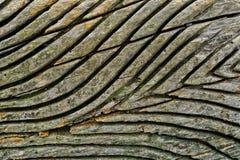 Το σιτάρι στο ξύλο στοκ φωτογραφία με δικαίωμα ελεύθερης χρήσης