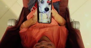 Το παιδί εξετάζει το σκυλί τηλεφωνικής οθόνης απόθεμα βίντεο