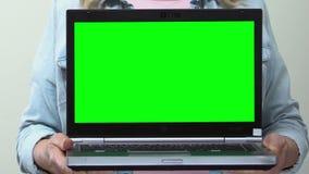 Το lap-top εκμετάλλευσης γυναικών με την πράσινη οθόνη στα χέρια, πιστώνει on-line, αγορές app απόθεμα βίντεο