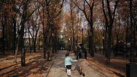 Το Mom και η κόρη περπατούν κατά μήκος μιας λεωφόρου που σκορπίζεται με το κίτρινο φύλλωμα φθινοπώρου Ευτυχής οικογένεια σε έναν  απόθεμα βίντεο