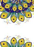 Το Peacock επενδύει με φτερά το σχέδιο για το σχέδιό σας απεικόνιση αποθεμάτων