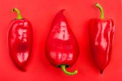 Τρία φωτεινά μεγάλα κόκκινα πιπέρια κουδουνιών με οι ουρές στην κόκκινη κινηματογράφηση σε πρώτο πλάνο άποψης υποβάθρου τοπ στοκ φωτογραφίες