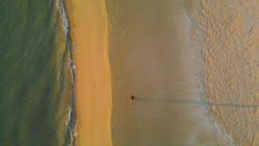 Τρεξίματα τύπων αθλητών κατά μήκος της ακτής μια ηλιόλουστη ημέρα αημένο τρέχοντας ρηχό ίχνος παπουτσιών παπουτσιών εστίασης πεδί φιλμ μικρού μήκους