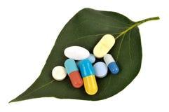 Φάρμακα σε ένα φύλλο φυτών στοκ εικόνες
