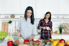Φίλες που μαγειρεύουν τη φυτική εγχώρια κουζίνα θερινής σαλάτας στοκ φωτογραφία με δικαίωμα ελεύθερης χρήσης
