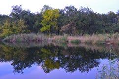 Φθινόπωρο στον ποταμό μπορείτε να δείτε το νερό και το δάσος 1 στοκ εικόνα με δικαίωμα ελεύθερης χρήσης
