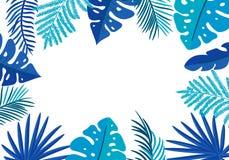 Φοίνικας φύλλων θερινών διανυσματικός floral πλαισίων τροπικός με τη θέση για το κείμενο στοιχεία σχεδίου χρώματος για την τυπωμέ ελεύθερη απεικόνιση δικαιώματος