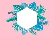 Φοίνικας φύλλων θερινών διανυσματικός floral πλαισίων τροπικός με τη θέση για το κείμενο στοιχεία σχεδίου χρώματος για την τυπωμέ απεικόνιση αποθεμάτων