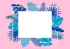 Φοίνικας φύλλων θερινών διανυσματικός floral πλαισίων τροπικός με τη θέση για το κείμενο στοιχεία σχεδίου χρώματος για την τυπωμέ διανυσματική απεικόνιση