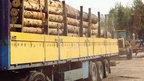 Φορτηγό αναγραφών με το πλήρες φορτίο των κομμένων δέντρων, πλήρες φορτηγό κούτσουρων σωμάτων φιλμ μικρού μήκους