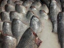 Φρέσκα καθαρισμένα ψάρια χωρίς κεφάλι στον πάγο στοκ εικόνα