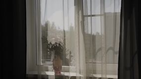 φρέσκα τριαντάφυλλα ανθ&omicron Εορταστική ανθοδέσμη των φρέσκων λουλουδιών νυφικός γάμος ανθοδεσμών γάμος λουλουδιών απόθεμα βίντεο