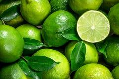Φρέσκος juicy ασβέστης με τα φύλλα στοκ φωτογραφίες