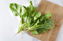 Φρέσκο επιλεγμένο και πλυμένο σπανάκι στον άσπρο πίνακα κουζινών, τοπ άποψη Υγιής και οργανική τροφή που χρησιμοποιεί για το μαγε στοκ εικόνα