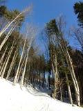 Φύση που καλύπτεται στο χιόνι κατά τη διάρκεια του χειμώνα Σλοβακία στοκ εικόνες