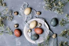 Φυσικά βαμμένα αυγά Πάσχας στο εμπορευματοκιβώτιο χαρτονιού στοκ φωτογραφία