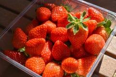 φυσικές και φρέσκες κόκκινες φράουλες σε έναν πίνακα έτοιμο να φάει στοκ φωτογραφία