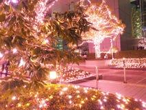 Φωτισμός Χριστουγέννων στο Τόκιο, Shinjuku στοκ φωτογραφία