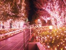 Φωτισμός Χριστουγέννων στο Τόκιο, Shinjuku στοκ φωτογραφίες με δικαίωμα ελεύθερης χρήσης